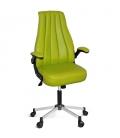 Ofisinhazır Minion Yönetici&Oyuncu Koltuğu Krom Ayak Yeşil